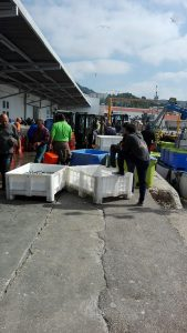 Porto de Sesimbra, dia 21 de maio 2018